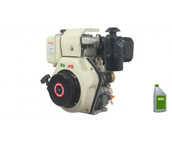 Motore a Diesel TrinAgria MJ418DAE 10HP completo